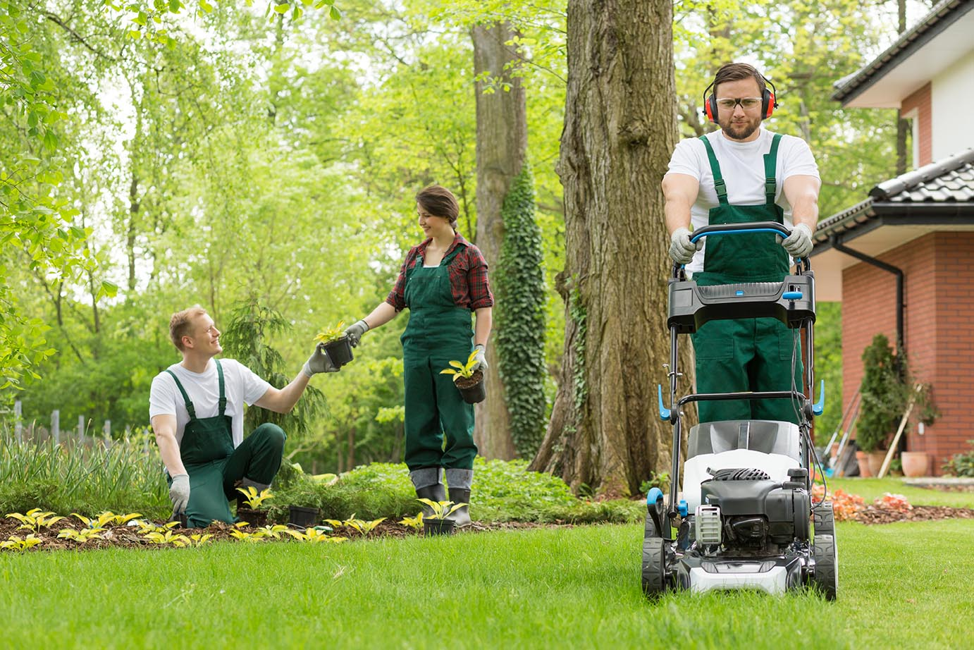 Lawn Mowing Services VIC