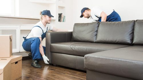 Best Moving Companies in New Farm